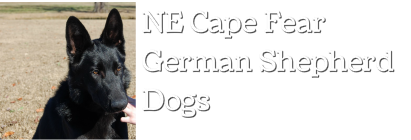 North East Cape Fear German Shepherd Dogs